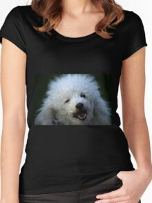 cute dog poodle Women's Fitted Scoop T-Shirt