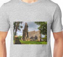 Avondale Castle Unisex T-Shirt