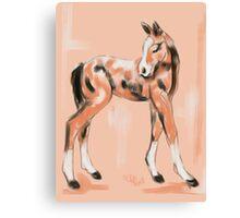 Foal Peach Canvas Print