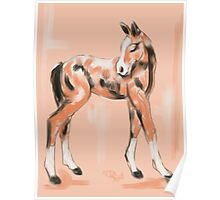 Foal Peach Poster