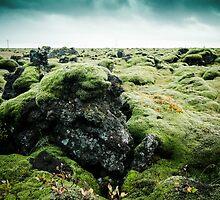 Rocks & Moss by Marsstation