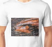 Fossilized head of a giant fish Unisex T-Shirt