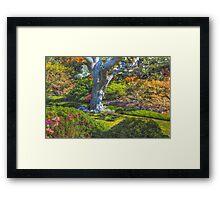 Abkhazi Gardens 1, Victoria, BC Framed Print