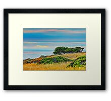 Sea Ranch Evening, Sea Ranch, CA Framed Print