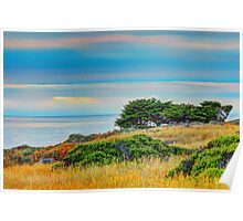 Sea Ranch Evening, Sea Ranch, CA Poster