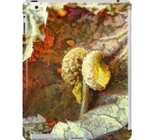 Little acorn caps iPad Case/Skin