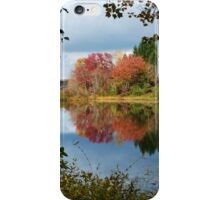 Colorful Fall Reflection Landscape iPhone Case/Skin