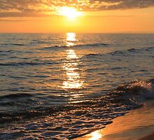 Lake Michigan Sunset by Joy Fitzhorn