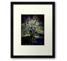 Oberon's Tree Framed Print