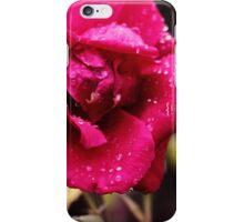 279/365 iPhone Case/Skin