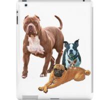 The Dog Posse And Cat iPad Case/Skin