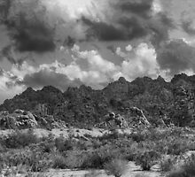 Wonderland Of Rocks (B&W Version) by Peter B
