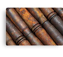 Rusty Shells Canvas Print