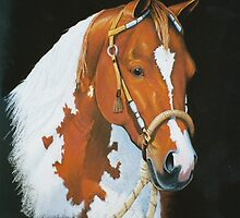 Tobiano by louisegreen