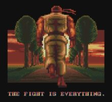 RYU Street Fighter II: The Fight is everything. by webninja