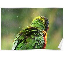 After Bath Shower. Poster