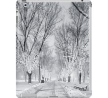Snow's path down Comm Ave iPad Case/Skin