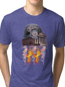 sky monkey #3 Tri-blend T-Shirt