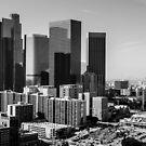 LA Downtown by Radek Hofman
