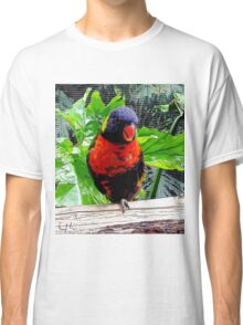 Natural Beauty, Photo / Digital Painting  Classic T-Shirt