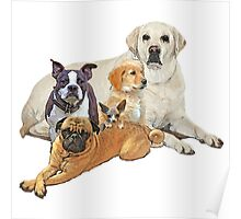 Dog posse with lab Poster