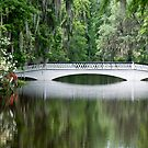 Low Country Bridge by barnsis