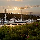 Saquatucket Harbor at Sunset by Nancy Bray