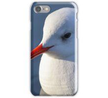 Portrait of a slender-billed gull  iPhone Case/Skin