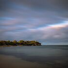 Cliff at Camerons Bight by susanzentay