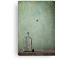 Just an old bottle and its cap Canvas Print