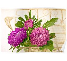 Asters In Tray - Digital Art Oil Painting Poster