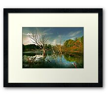 """ Wonderous ""  Framed Print"