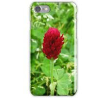 One Tiny Clover iPhone Case/Skin