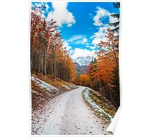 trekking path in an autumn day in the alps Poster