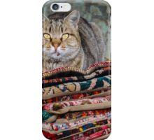 Istanbul Cat iPhone Case/Skin