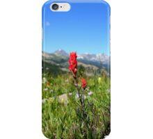 Colorado Flowers iPhone Case/Skin