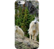 Baby and Mamma Mountain Goat iPhone Case/Skin