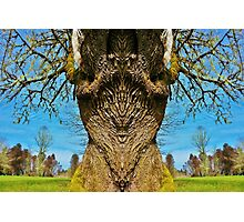 Fatherwood Photographic Print