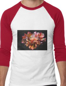 roses in tha garden Men's Baseball ¾ T-Shirt
