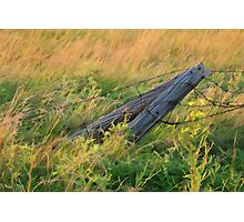 Fallen Fence Photographic Print