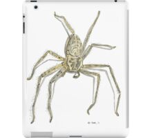 Fly Catcher iPad Case/Skin