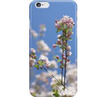 blossom on blue iPhone Case/Skin