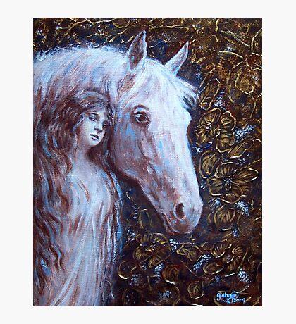 White Horse Beauty Photographic Print