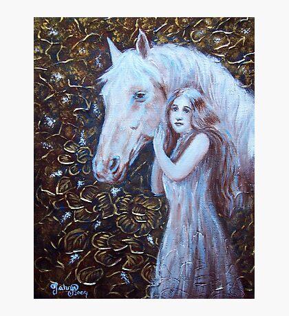 White Horse Beauty III Photographic Print