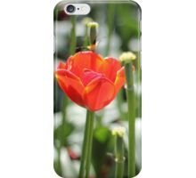 outlasting iPhone Case/Skin