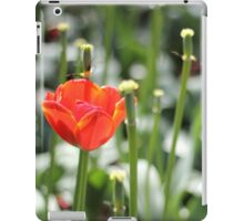 outlasting iPad Case/Skin