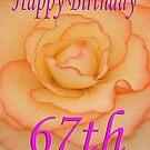 Happy 67th Birthday Flower by martinspixs