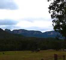 A break in the heavy cloud, Newnes Valley road, Blue Mountains. N.S.W. by Rita Blom