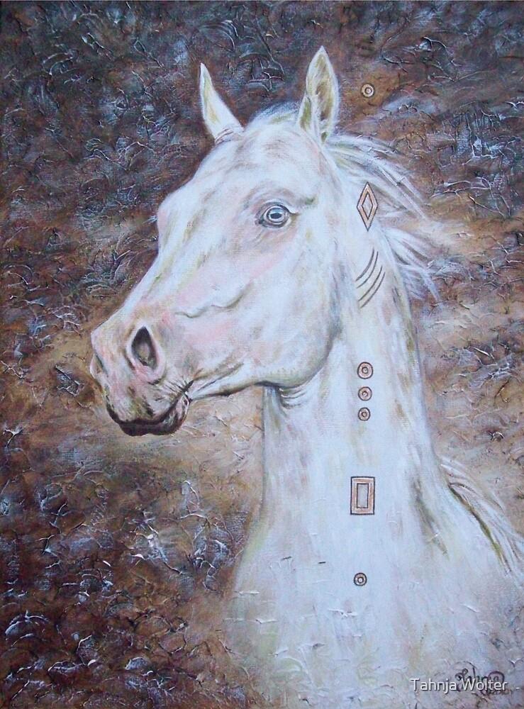 Habib Shael -- Akhal Teke Stallion by Tahnja
