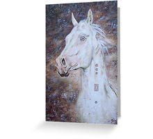 Habib Shael -- Akhal Teke Stallion Greeting Card